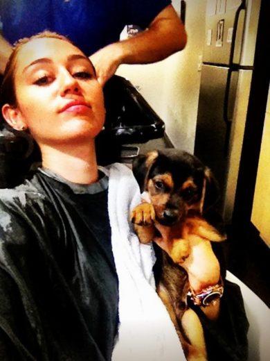 Miley Cyrus e Happy