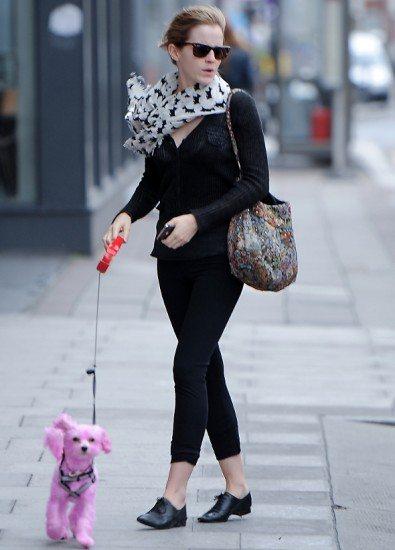 Emma Watson pinta a cachorra de rosa!