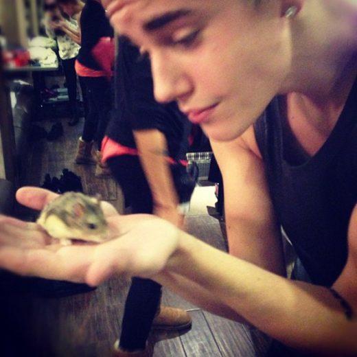Justin Bieber brinca com hamster! *-*