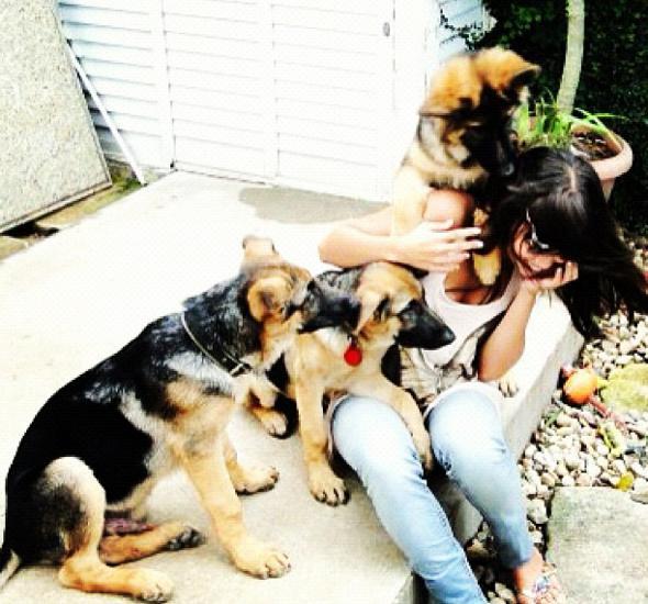 Pérola Faria brinca com filhotes fofos de cachorro