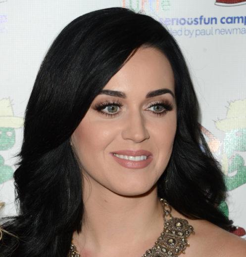 OMG! Katy Perry tem uma irmã desconhecida, diz revista!