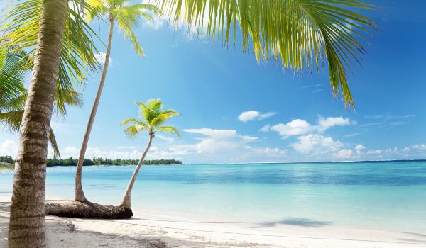 Que viagem de férias combina com você?