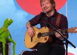 """Ed Sheeran canta ao lado do Caco, dos Muppets, no """"Red Nose Day"""""""