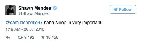 Shawn Mendes e Camila Cabello estão flertando no Twitter