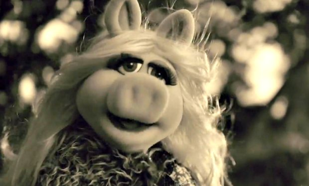 miss piggy cover adele