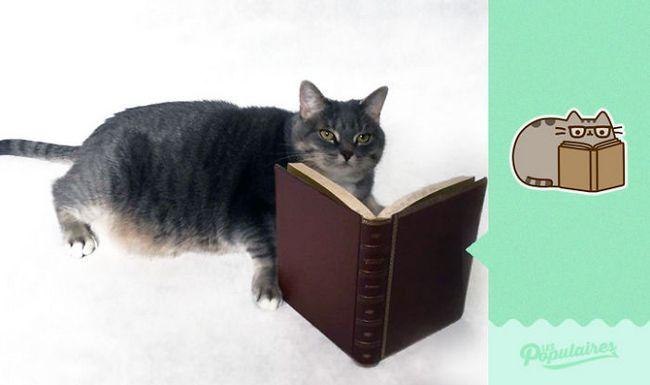 gato pusheen da vida real lendo