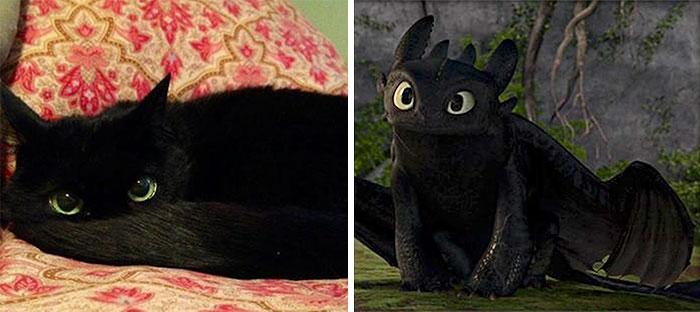banguela de como treinar o seu dragão da vida real