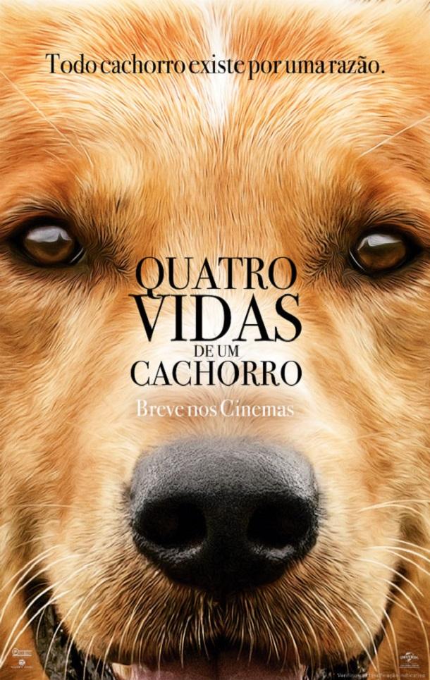 quatro vidas de um cachorro livros que vão virar filme