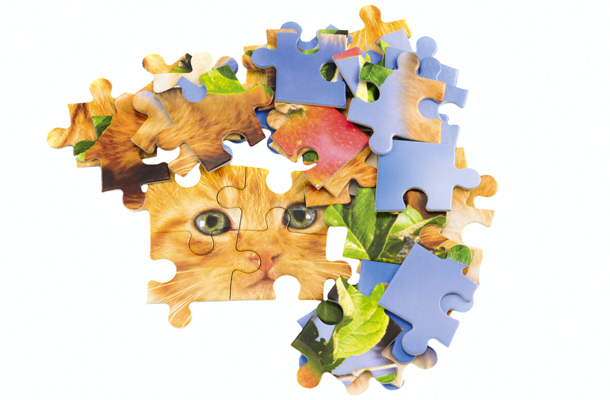 Brinquedo de virgem: quebra-cabeça
