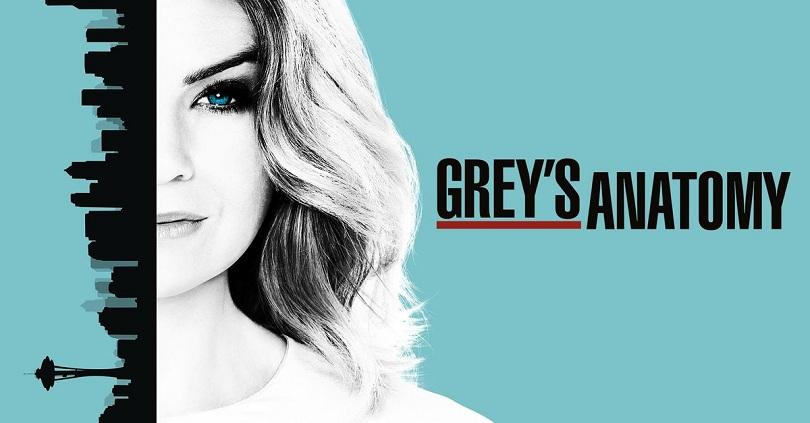 Ilustração de Grey's Anatomy com Meredith