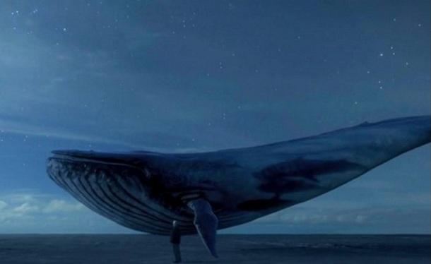 Imagem da baleia azul usada no jogo