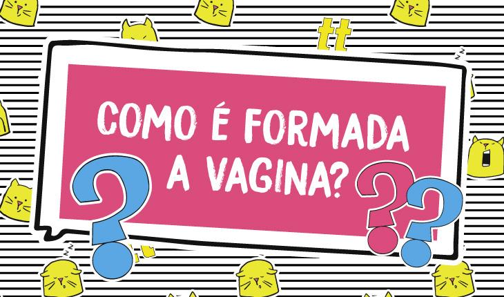 Como é formada a vagina?