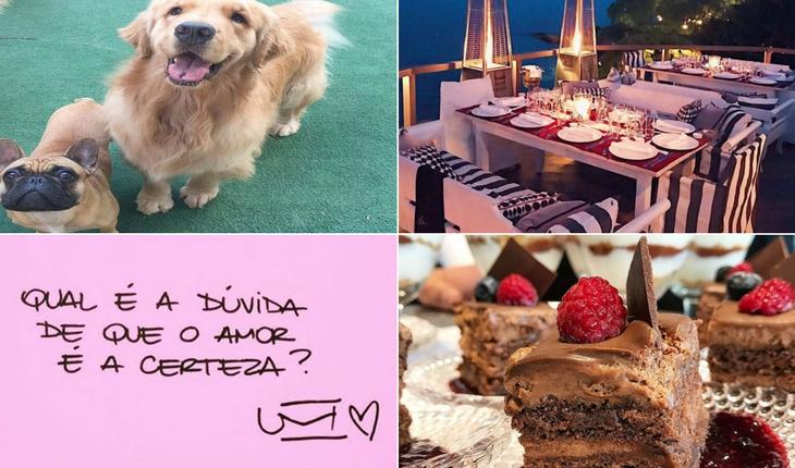 cachorros-comida-paisagem-frase