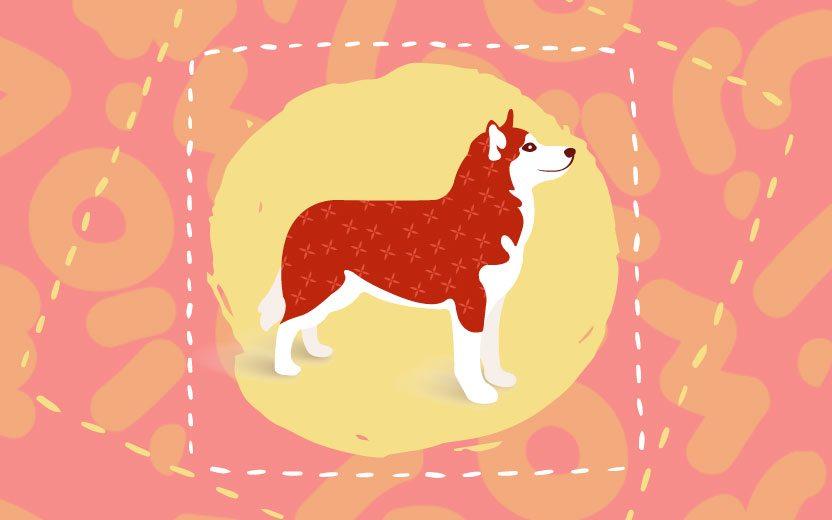 Veja as previsões do Horóscopo Chinês em 2018, o ano do Cachorro