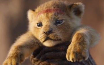 trailer de o rei leão