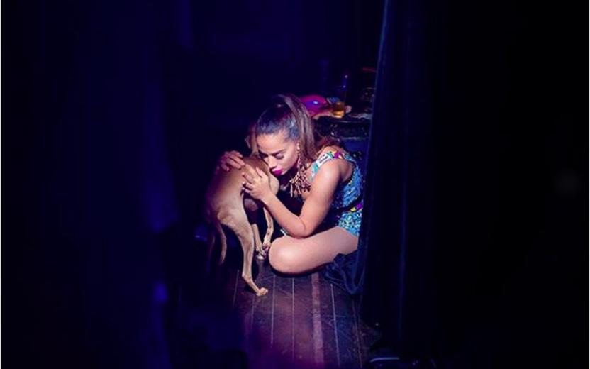 cachorro da Anitta