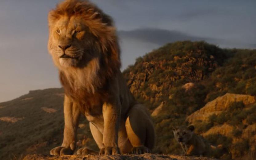 campanha de Rei Leão
