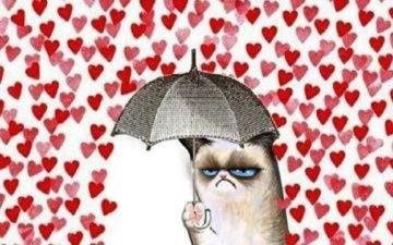 15 memes para solteiros nesse Dia dos Namorados