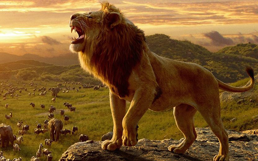 live-action de O Rei Leão