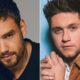 Liam Payne invade live de Niall Horan e os fãs do One Direction estão surtando!