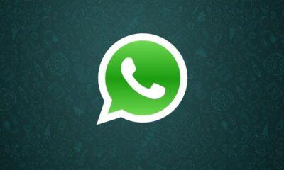 No combate às fake news, WhatsApp libera recurso para pesquisa de mensagens no Google